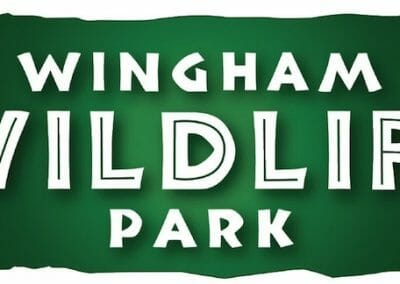 wingham-wildlife-park-1345468086
